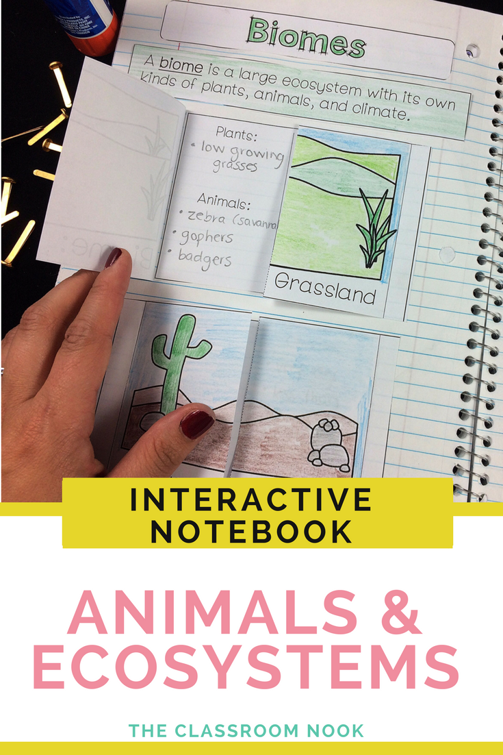 Create an Animal Notebook: Learn about animals the fun way.