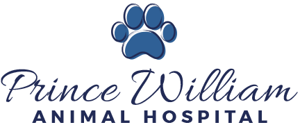 Prince William Animal Shelter in Manassas, Virginia Hires a Part-Time Veterinarian